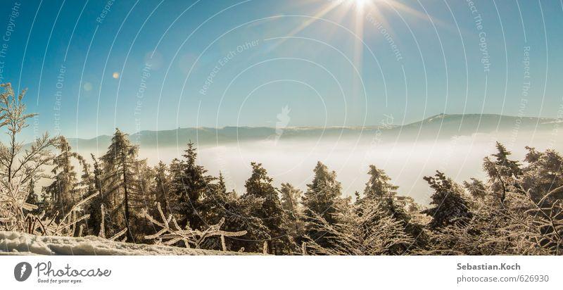 Wintertraum Natur Ferien & Urlaub & Reisen Baum Sonne Erholung Landschaft Freude Wald Berge u. Gebirge Schnee Holz Horizont Nebel Freizeit & Hobby wandern