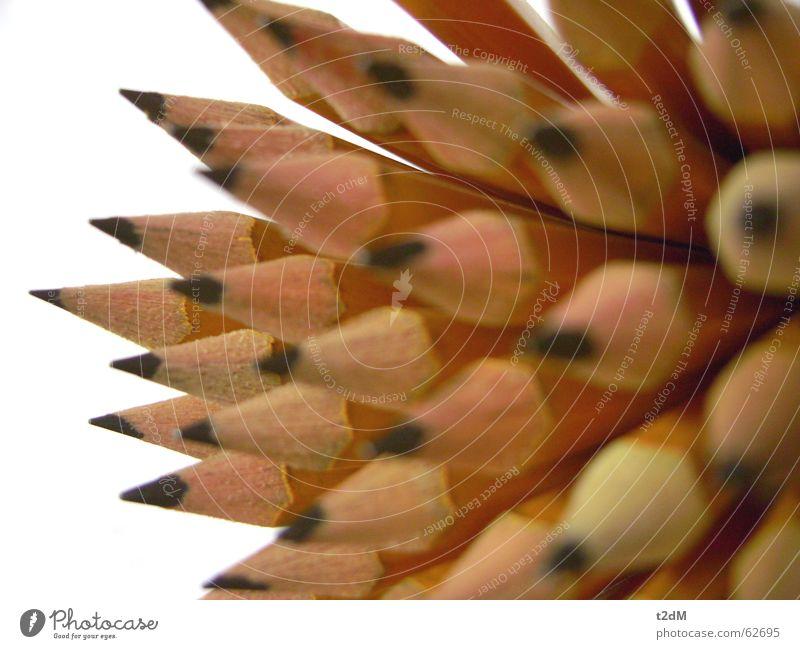 Super-verbleit 2 Schreibstift Bleistift Graphit Typographie schwarz grau Holz Zoomeffekt Spitze schreiben Schriftzeichen Natur Makroaufnahme Nahaufnahme