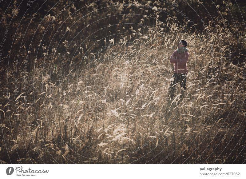 Kristof (5) Mensch maskulin Junger Mann Jugendliche Erwachsene Leben Körper 1 18-30 Jahre Umwelt Natur Landschaft Pflanze Herbst Winter Schönes Wetter Sträucher