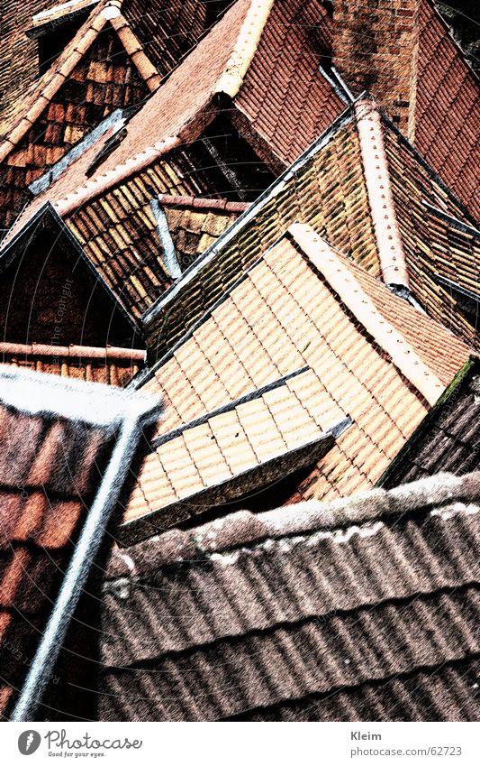 Dächer, Dachzeigel, Giebel, Altstadt von Quedlinburg rot Stein Gebäude Deutschland Ordnung Osten Dachziegel Weltkulturerbe Fachwerkfassade Sachsen-Anhalt