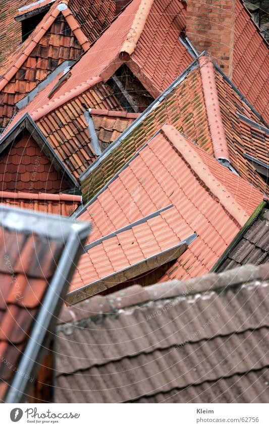 Dächer Quedlinburg Dorf Stadt Altstadt Menschenleer Haus Gebäude Architektur Dach Sehenswürdigkeit Denkmal Weltkulturerbe rot Dachziegel Sachsen-Anhalt