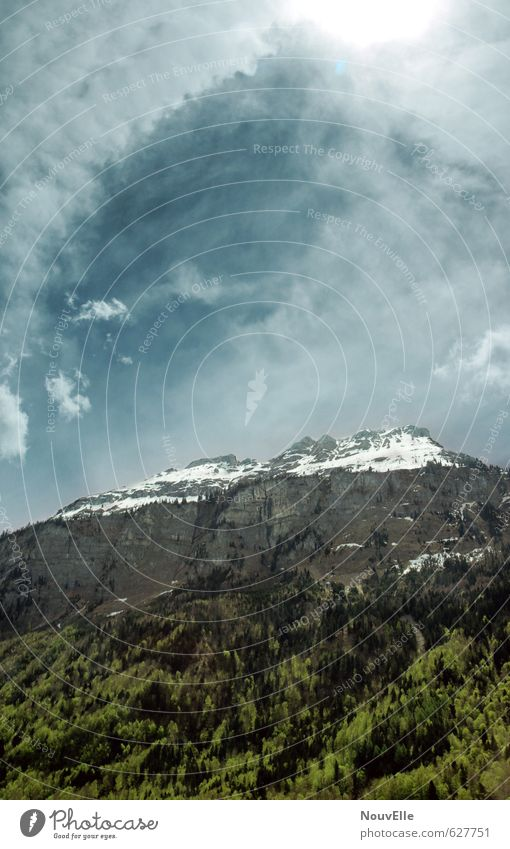 This, Himmel Natur Sommer Sonne Baum Landschaft Wolken Tier Wald Umwelt Berge u. Gebirge Felsen Luft elegant Wind groß