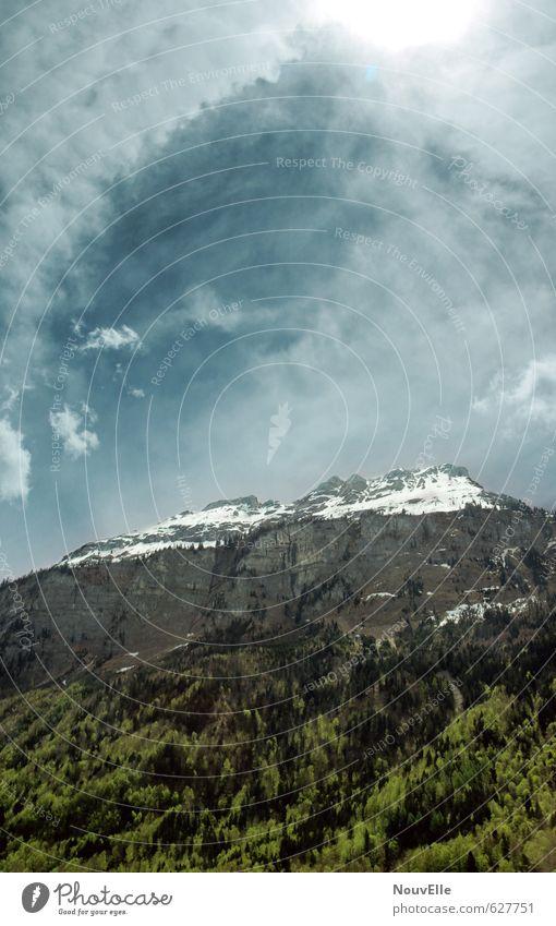 This, Umwelt Natur Landschaft Tier Luft Himmel Wolken Sonne Sonnenlicht Sommer Schönes Wetter Wind Baum Wald Felsen Berge u. Gebirge Gipfel