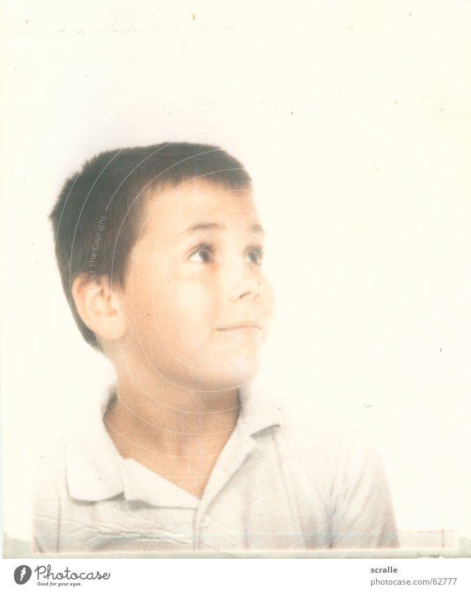 der kleine matz staunen groß braun weiß Hemd aufstrebend fabian Freude Blick Junge klein jung Auge alt poloshirt Haare & Frisuren