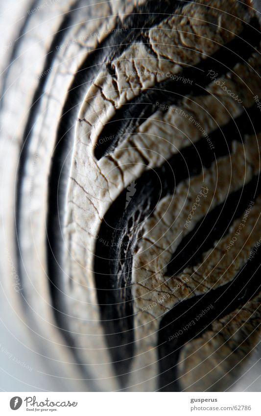 Struktur ist alles im Leben schwarz Linie Haut Tierhaut
