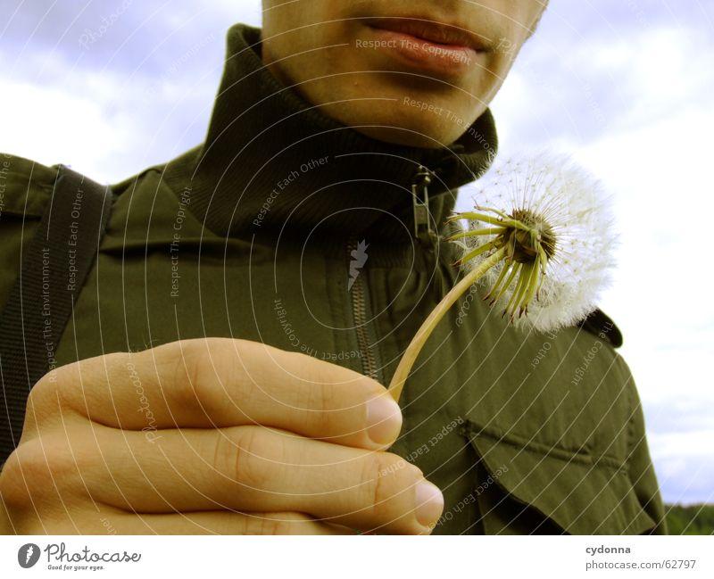 Pustefix Mensch Mann Natur Hand schön Pflanze Blüte Frühling Glück wandern Wind Perspektive Sicherheit gefährlich Lippen bedrohlich