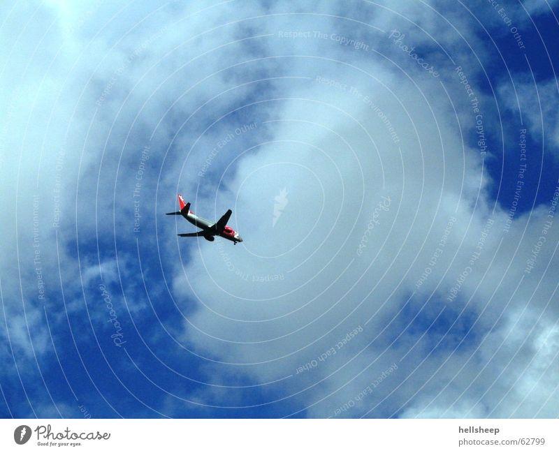 learn to fly Himmel weiß blau Wolken Freiheit Luft Flugzeug fliegen frei Luftverkehr verloren