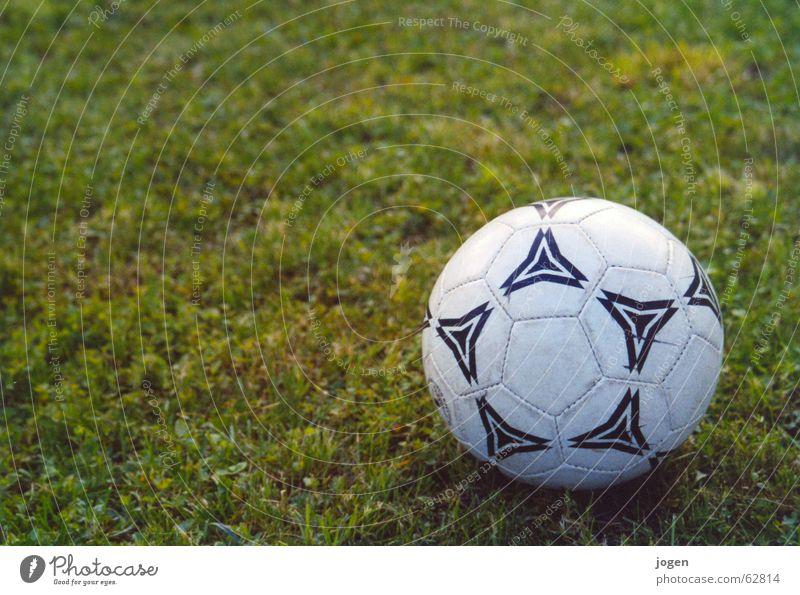 Der Ball ist rund... weiß grün Sommer Freude Sport Wiese Spielen Gras Fußball Rasen Tor Sportveranstaltung Pokal einzeln Stadion