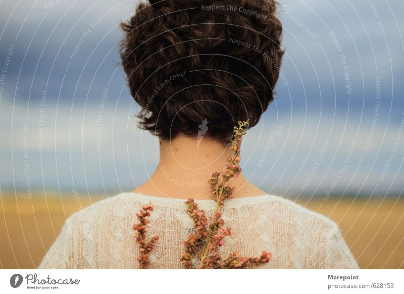 Anna Freiheit feminin Junge Frau Jugendliche Erwachsene 1 Mensch 18-30 Jahre Umwelt Natur Landschaft Pflanze Wolken Sonne Wetter Blume Feld Pullover brünett