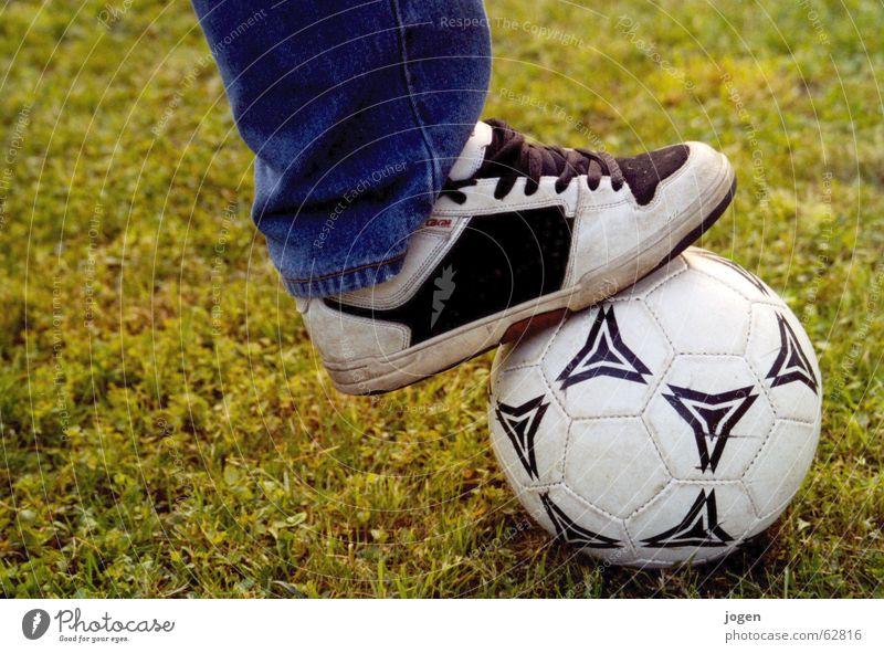 10+ weiß grün Sommer Freude Sport Wiese Spielen Gras Fußball Ball Rasen Freizeit & Hobby Tor einzeln Stadion Defensive