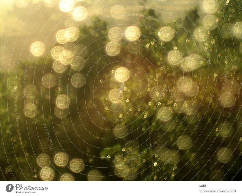 sun & rain Sonne Regen dreckig nass Fensterscheibe Lichtpunkt