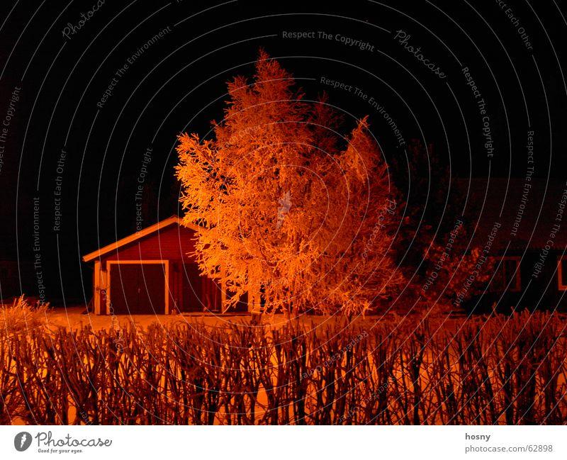 Nacht in Schweden Baum Winter Haus Europa