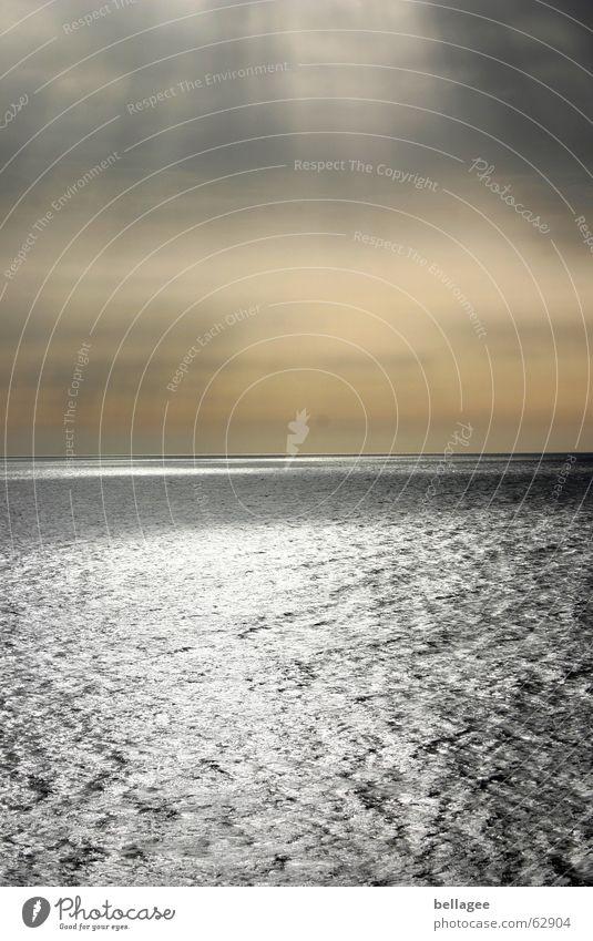 ...und dann war er weg Meer Stimmung Einsamkeit Licht Außenaufnahme See Ferien & Urlaub & Reisen Aussicht Panorama (Aussicht) trüb Wellen Sonnenuntergang