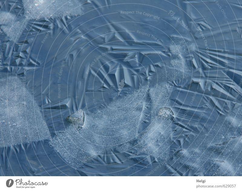 brüchig... Umwelt Natur Winter Eis Frost Teich frieren ästhetisch authentisch außergewöhnlich einfach kalt natürlich blau grau achtsam ruhig gefährlich bizarr
