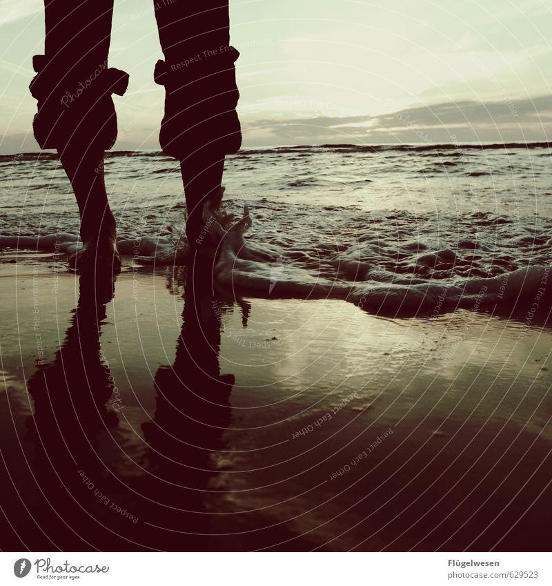 Tag am Meer Ferien & Urlaub & Reisen Sommer Meer Erholung Strand Ferne Küste Freiheit Schwimmen & Baden Beine Fuß Wellen Tourismus Tierfuß nass Ausflug