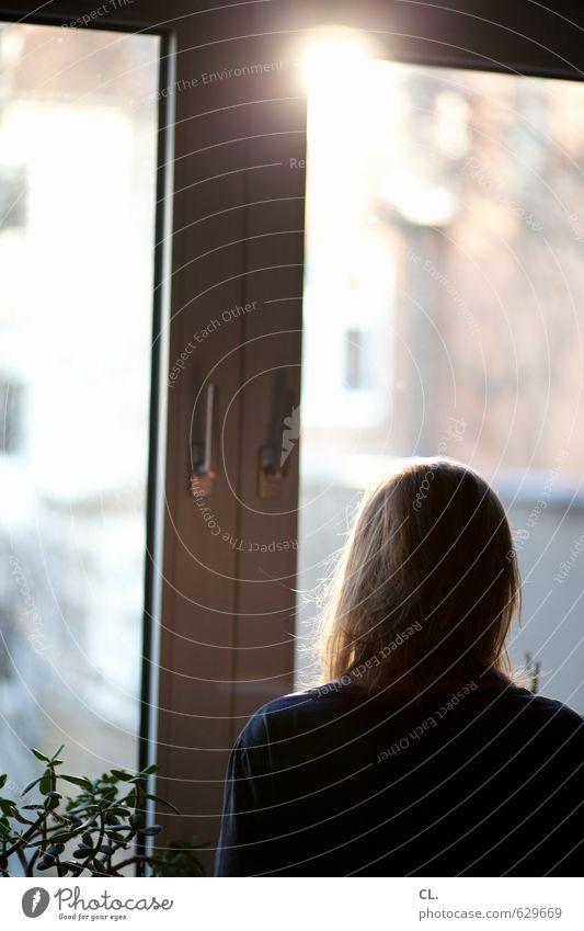 morgähn Mensch Frau Sonne Einsamkeit ruhig Erwachsene Fenster Traurigkeit feminin Kopf träumen Wohnung Raum Häusliches Leben Schönes Wetter Zukunft