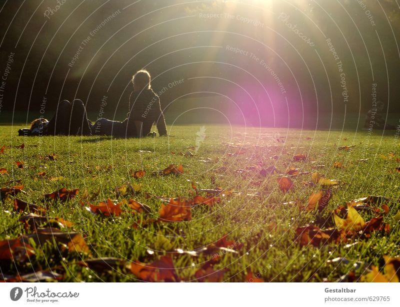 Spätsommer Junge Frau Jugendliche Junger Mann Freundschaft Erwachsene 2 Mensch 18-30 Jahre Landschaft Sonnenlicht Sommer Herbst Schönes Wetter Blatt Park Wiese