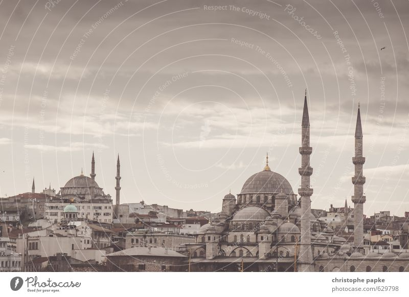 Skyline Istanbul, Türkei Moschee Stadt Sightseeing Städtereise Stadtzentrum Altstadt Kirche Bauwerk Gebäude Sehenswürdigkeit Neue Moschee