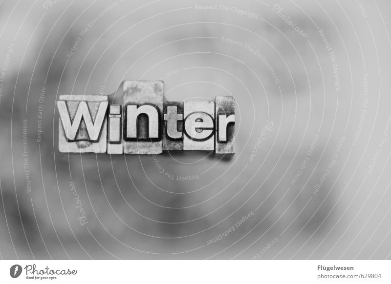 Dezember, Januar und Februar Natur Landschaft Winter kalt Umwelt Schnee Schneefall Wetter Schriftzeichen Klima Schönes Wetter Buchstaben frieren Klimawandel