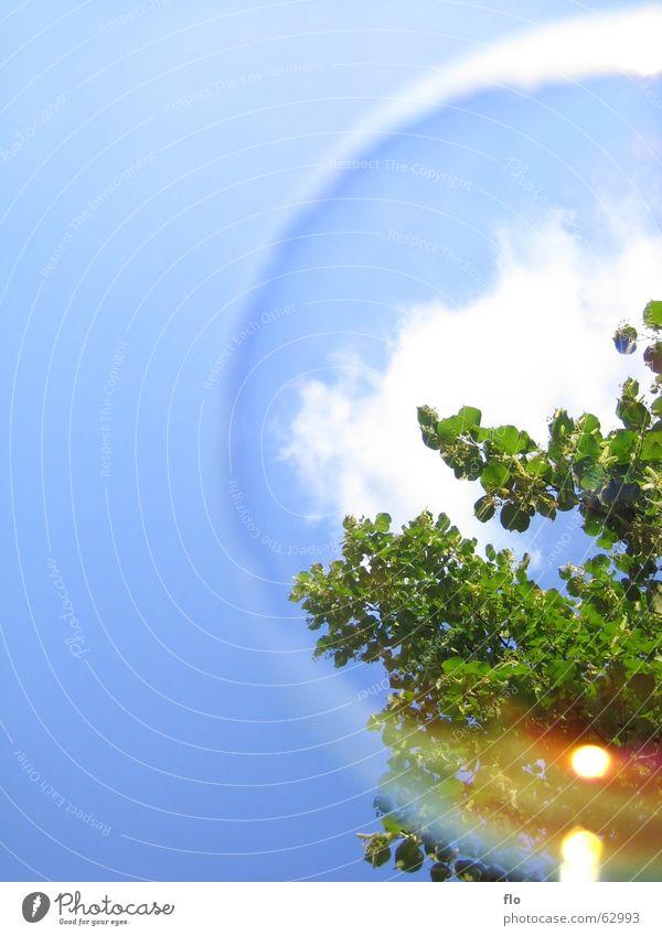 Welt in einer Blase Wasser Himmel Baum grün blau Wolken Farbe Spielen Stil Luft Kunst Wind Erde Sträucher Seifenblase