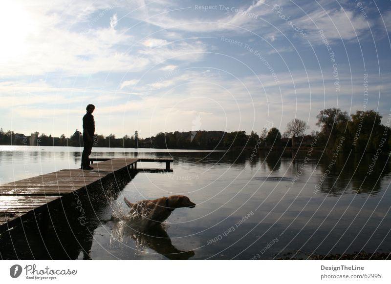 Tag am See mit Hund Mensch Wasser Himmel weiß Sonne blau Ferien & Urlaub & Reisen Wolken Ferne Erholung Herbst springen Bewegung Holz