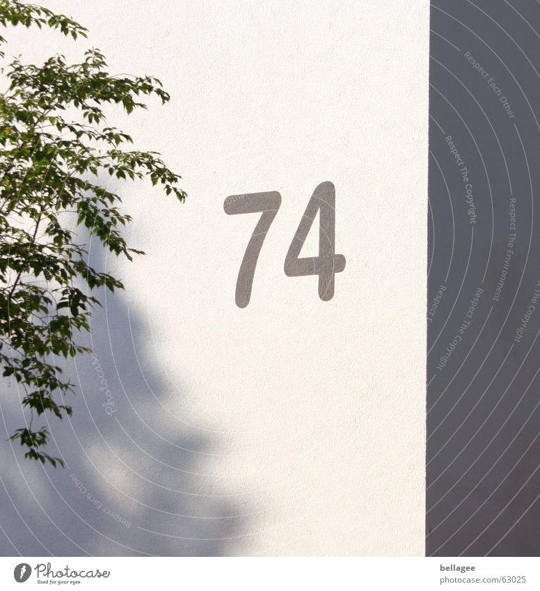 74 Ziffern & Zahlen Wand Baum Hausnummer Ecke grau weiß Außenaufnahme Schatten gerde vierundsiebzig