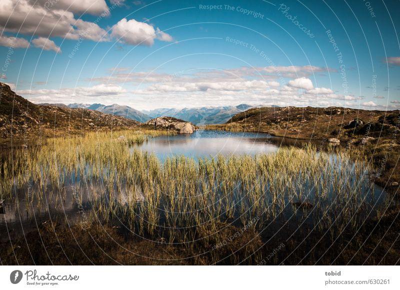 Bis zum Horizont Himmel Natur Pflanze Sommer Wasser Sonne Landschaft Wolken Ferne Berge u. Gebirge Gras Freiheit See Erde Idylle