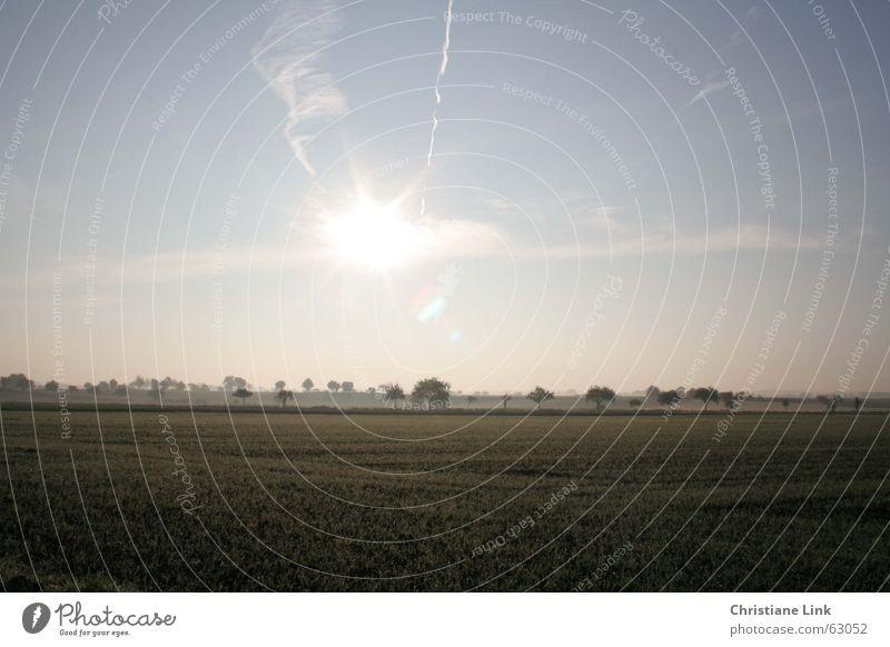 Landschaft Natur Baum Sonne Ferne Gras Feld Nebel