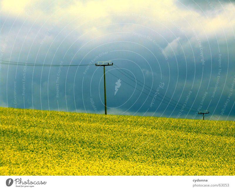 Da kommt was auf uns zu... Natur Himmel Blume Sommer Wolken dunkel Stimmung Kraft Wetter Hoffnung Energiewirtschaft Elektrizität Aussicht Landwirtschaft Amerika