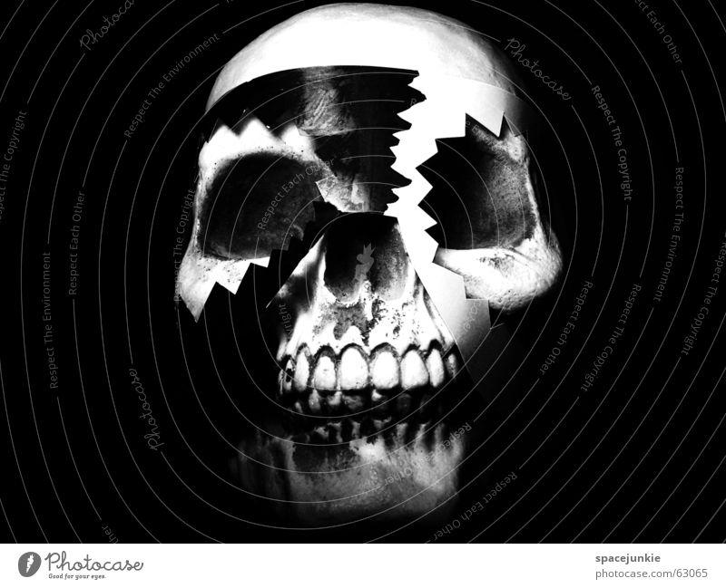 Voodoo (3) Skelett Freak schwarz weiß dunkel Zauberei u. Magie Schwarze Magie besessen Afrika Zauberer Kunst Schriftsetzer verrückt Schädel Maske Tradition