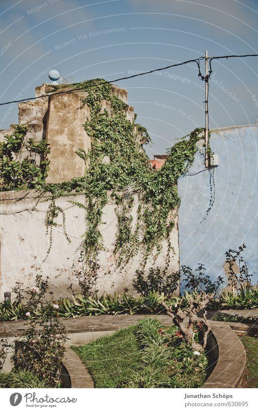La Orotava / Teneriffa XLIV Ferien & Urlaub & Reisen alt blau Pflanze grün Haus Wärme Fassade Tourismus ästhetisch Insel Kabel Spanien Dorf Skyline Hütte
