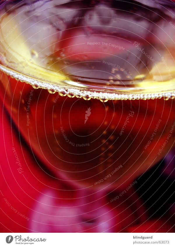 Skøl ... Cheers ... Prosit Farbe Bewegung Feste & Feiern glänzend Glas nass Fröhlichkeit Wassertropfen Getränk trinken Gastronomie Bar Silvester u. Neujahr