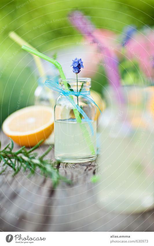 spring.break Lebensmittel Picknick Getränk Erfrischungsgetränk Limonade Saft Flasche Lifestyle Gesunde Ernährung Erholung Garten Feste & Feiern Frühling Sommer