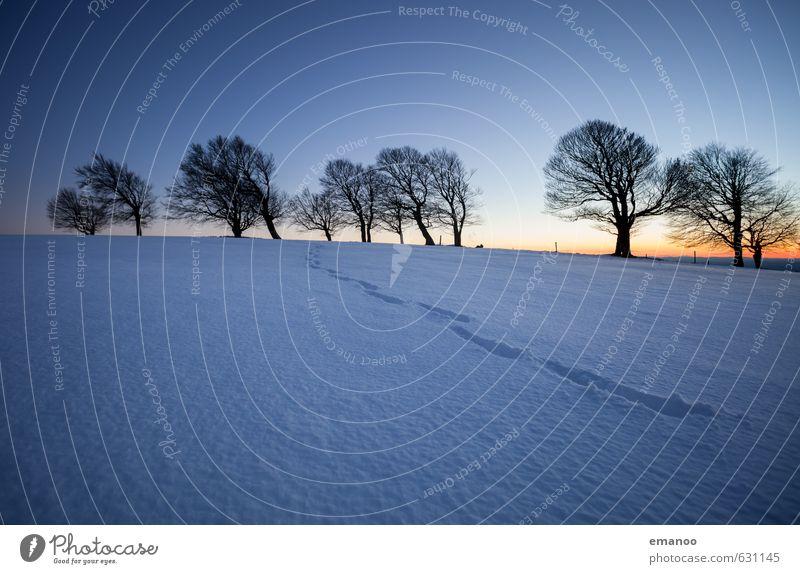 Der Winterpfad Himmel Natur Ferien & Urlaub & Reisen blau Baum Landschaft Winter Ferne schwarz kalt Berge u. Gebirge Schnee Wege & Pfade Freiheit Horizont Eis