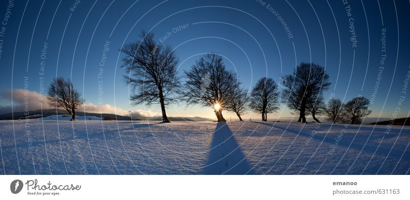 Winterabendbuchen Himmel Natur Ferien & Urlaub & Reisen blau Baum Landschaft Ferne kalt Wald Berge u. Gebirge Schnee Eis Wetter Klima wandern