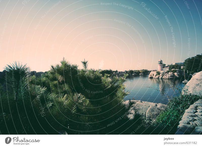 Leuchtbucht Umwelt Natur Landschaft Pflanze Tier Urelemente Luft Wasser Himmel Wolkenloser Himmel Horizont Sommer Wetter Schönes Wetter Sträucher Grünpflanze