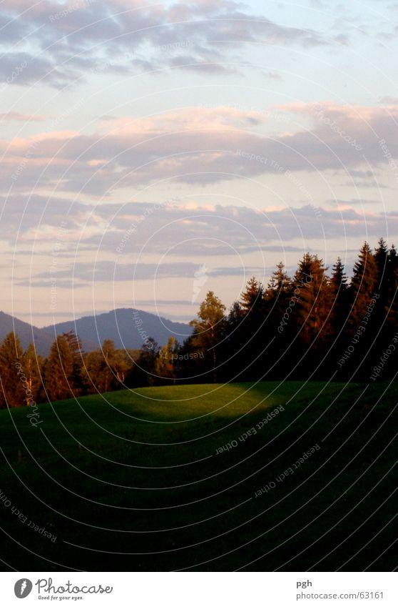 Sonnenuntergang in Iffeldorf Himmel Baum grün Wolken Wald Wiese Berge u. Gebirge Landschaft Stimmung Bayern