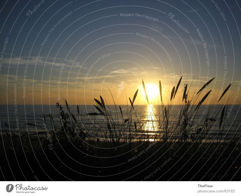 Abends am Meer dunkel Strand Gras Wolken Sonnenuntergang Wellen Sylt schwarz grün Wasser Himmel Wind water blau