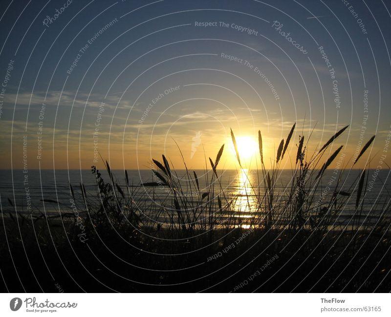 Abends am Meer Wasser Himmel Sonne grün blau Strand schwarz Wolken dunkel Gras Wellen Wind Sylt