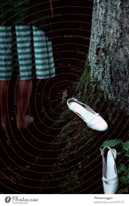 barfuss Baum grün Kleid Dame Moos Barfuß gestreift Baumrinde Wurzel