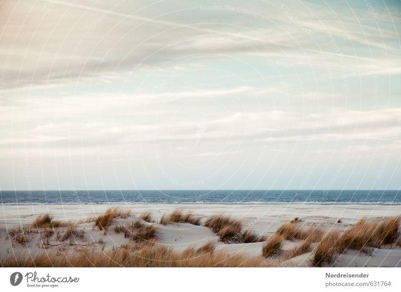 Ein Abend am Meer Sinnesorgane Erholung ruhig Sommer Sommerurlaub Strand wandern Landschaft Wasser Himmel Schönes Wetter Gras Nordsee exotisch frisch Sauberkeit