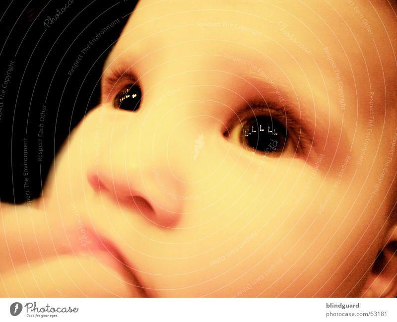 Die Melodie Deiner Augen Kind Freude Auge Leben Gefühle träumen Denken Wärme Baby glänzend groß Neugier Kleinkind Geborgenheit Musiknoten Wimpern