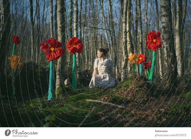 Frühlingsbote Mensch Frau Himmel Natur Pflanze Sommer Baum Blume Landschaft Wald Erwachsene Umwelt feminin Blüte sitzen