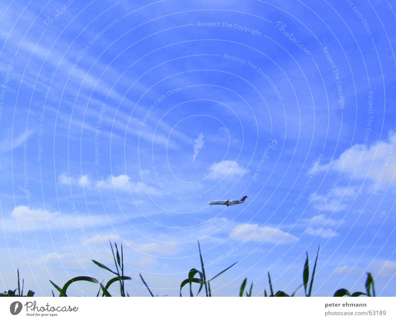 einfach mal ins blaue fliegen Himmel grün blau Ferien & Urlaub & Reisen Wolken Ferne Gras Flugzeug Horizont Flugzeuglandung Fernweh Abheben Passagierflugzeug