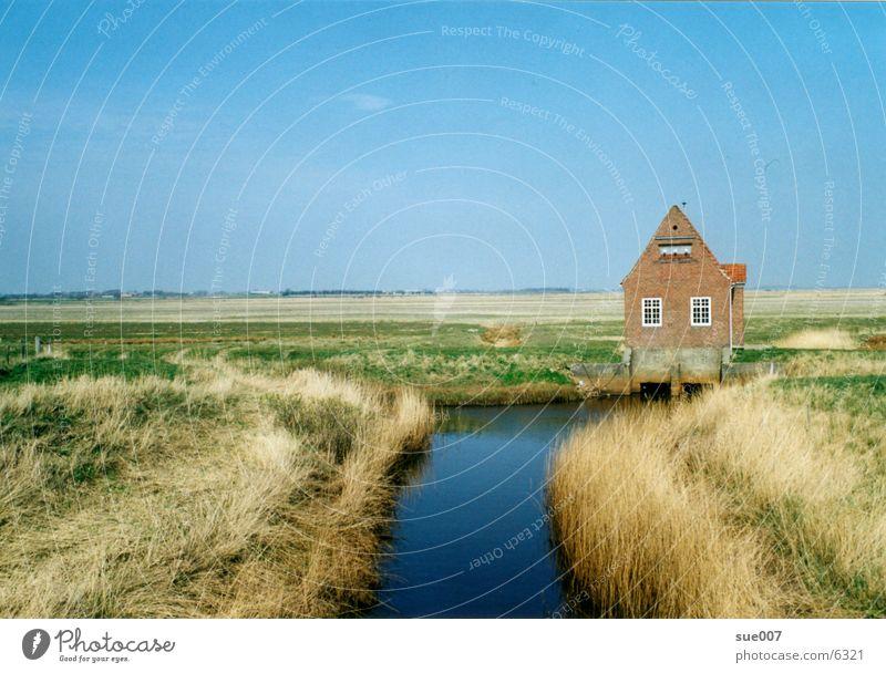 In Dänemark Ebene Küste Haus Wiese Nordsee