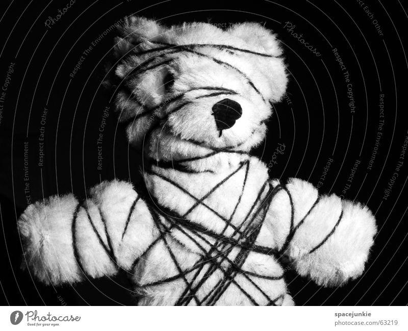 Bondage Teddybär Bayern Fetischismus gefangen gefesselt Schnur eingeengt schwarz weiß Bär bdsm Handschellen Einschränkung rollbraten