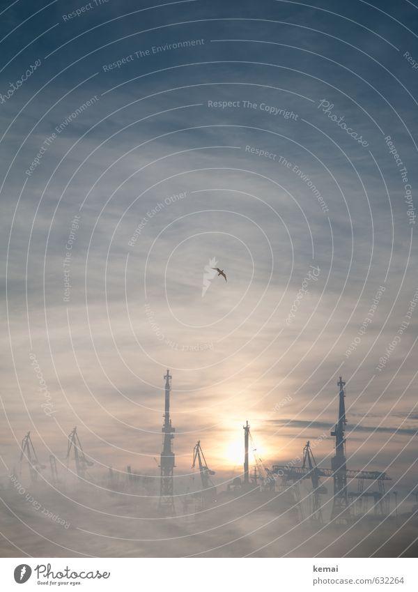 Typisch Hamburg Himmel Wolken Sonne Sonnenaufgang Sonnenuntergang Sonnenlicht Nebel Hafenstadt Industrieanlage Kran Sehenswürdigkeit Wahrzeichen Vogel Möwe 1