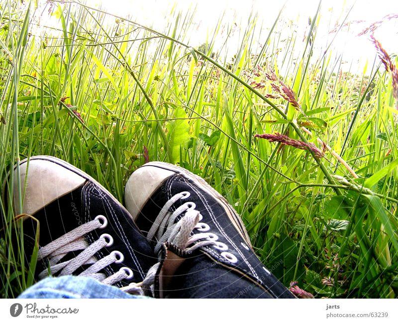 Träumer Blume Sommer Erholung Wiese Gras träumen Schuhe schlafen Frieden liegen Langeweile Chucks Turnschuh Blumenwiese ausschalten