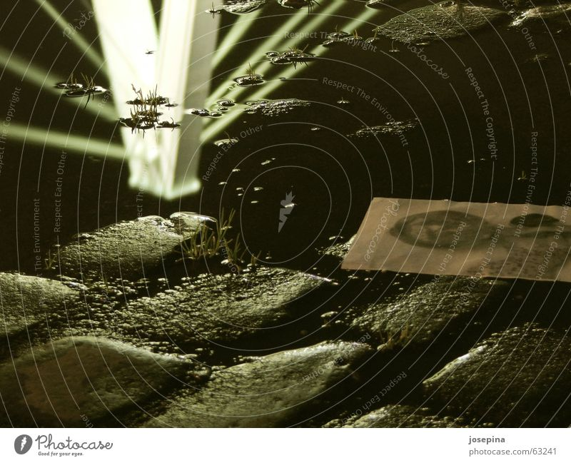 Brückenspitze Pfütze Reflexion & Spiegelung Fotografie dunkel Kopfsteinpflaster Licht Nacht Severinsbrücke Köln Wolken nass schwarz weiß analog Motivation
