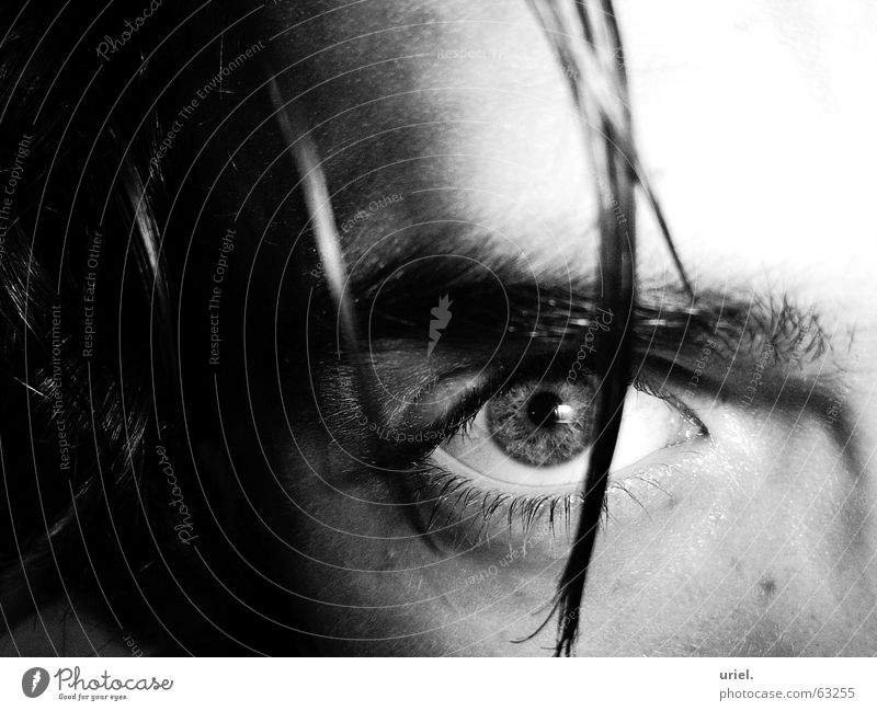 scharfsinnig Haarsträhne Pupille Wimpern Augenbraue Scharfsinn eye Haare & Frisuren Regenbogenhaut Schwarzweißfoto Blick Momentaufnahme